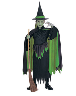 Girls Wizard of Oz Wicked Costume