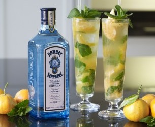 Bombay Sapphire Tangerine And Mint Collins Stylenest