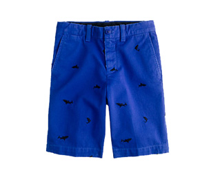 J Crew Embroidered Boys Summer Shorts