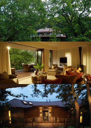 Luxury Treehouses at Chewton Glen