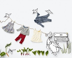 peter rabbit for baby gap