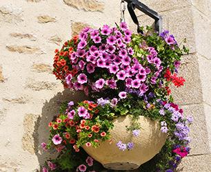 hanging baskets post