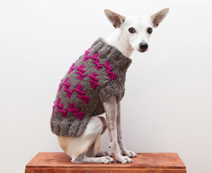 Ware of the Dog Sweater