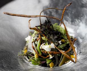 The new Aqua Seaweed Menu at Aqua Kyoto, London Picture - David Bebber