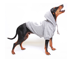 feat-pethaus-dog-hoodie-grey-profile