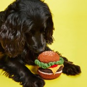 Feat-Ware-of-the-dog-knitted-hamburger