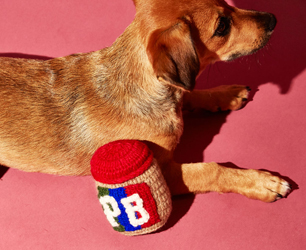 feat-ware-of-the-dog-knitted-peanut-butter-jar-lifestyle