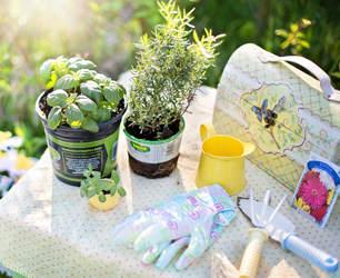 f-planting-780736_1280